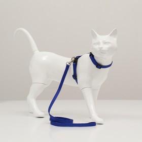 Комплект для кошек, ширина 1 см, ОШ 16,5-27 см, ОГ 21-35 см, поводок 120 см, голубой Ош