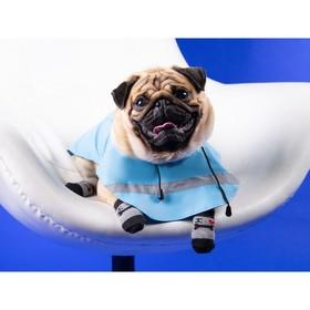 Носки нескользящие 'Люблю косточки', S (2,5/3,5 * 6 см), набор 4 шт Ош