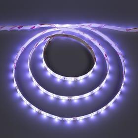 Светодиодная лента ЭРА, 12В, SMD2835, 5 м, IP65, 4.8Вт/м, 60 LED/м, 6500К