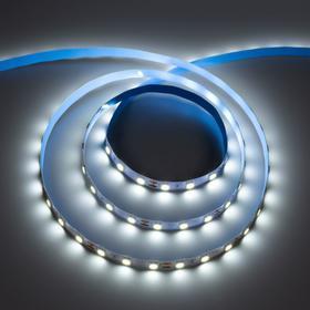 Светодиодная лента ЭРА, 12В, SMD5050, 5 м, IP20, 14.4Вт/м, 60 LED/м, 6500К