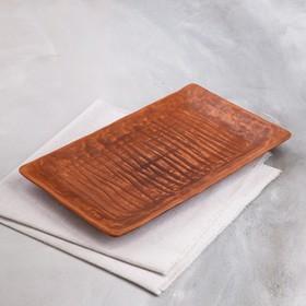 """Блюдо для подачи """"Суши"""", красная глина, 26,5х16,5х2 см"""