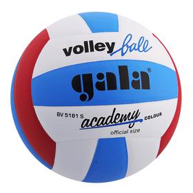 Мяч волейбольный Gala Academy, BV5181S, размер 5, PU, клееный Ош