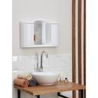 """Шкафчик зеркальный для ванной комнаты """"Арго"""", цвет снежно-белый"""