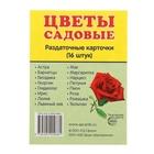 """Карточки обучающие """"Цветы садовые"""" 16 шт. 6,3 х 8,7 см."""