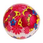 Мяч детский «Бабочки», d=22 см, 60 г