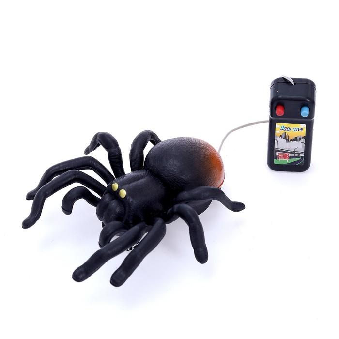 Животное «Паук», на дистанционном управлении, работает от батареек, цвета МИКС