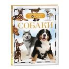 Детская энциклопедия «Собаки»