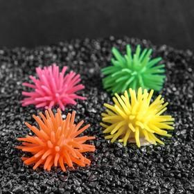 Декоративный анемон для аквариума, микс цветов, 5 х 3,5 см Ош
