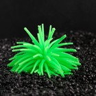 Декоративный анемон для аквариума, микс цветов, 8 х 5 см