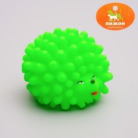 Игрушка резиновая пищащая 'Ёжик' малый, 6,5 см, микс цветов Ош