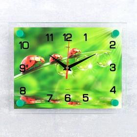 Часы настенные, серия: Животный мир, 'Божьи коровки', 20х26  см, микс Ош