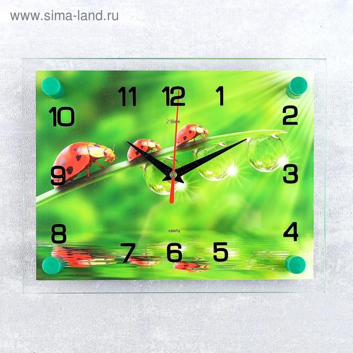 """Часы настенные, серия: Животный мир, """"Божьи коровки"""", 20х26  см, микс"""