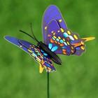"""Набор декоративного штекера 6 шт. """"Бабочка дельфиус"""" микс - Фото 9"""