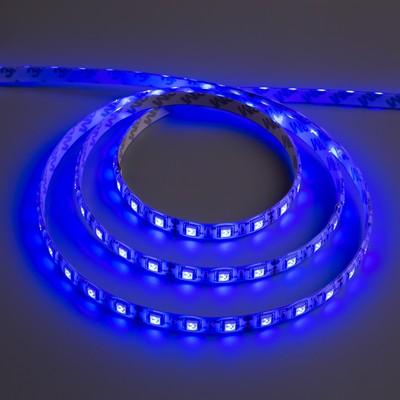 Светодиодная лента 12В, SMD5050, 5 м, IP65, 60 LED, 14.4 Вт/м, 14-16 Лм/1 LED, DC, СИНИЙ