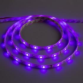 Светодиодная лента 12В, SMD5050, 5 м, IP65, 30 LED, 7.2 Вт/м, 14-16 Лм/1 LED, DC, ФИОЛЕТОВЫЙ
