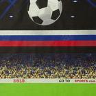 """Постельное бельё 1,5сп""""Традиция: Футбол"""", 147х217 см, 150х220 см, 70х70 см - 2 шт - Фото 3"""