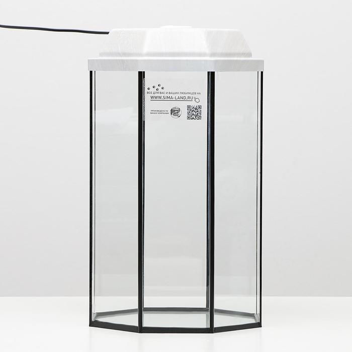 Аквариум восьмигранный с крышкой, 32 литра, 29 х 29 х 45 см, беленый дуб