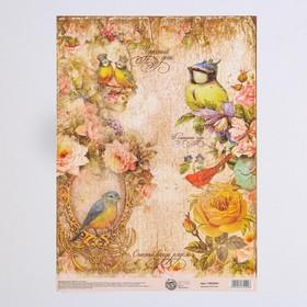 Декупажная карта «Птицы», 21 × 29,7 см Ош