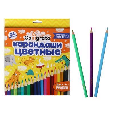 Карандаши 24 цвета, в картонной коробке