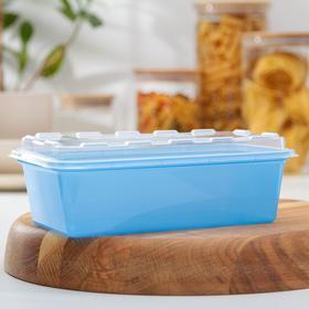 Контейнер для заморозки 1 л Zip, цвет синий