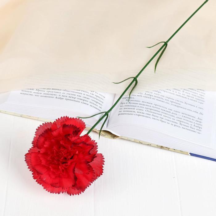 Цветы искусственные гвоздика красная с кантом 50 см