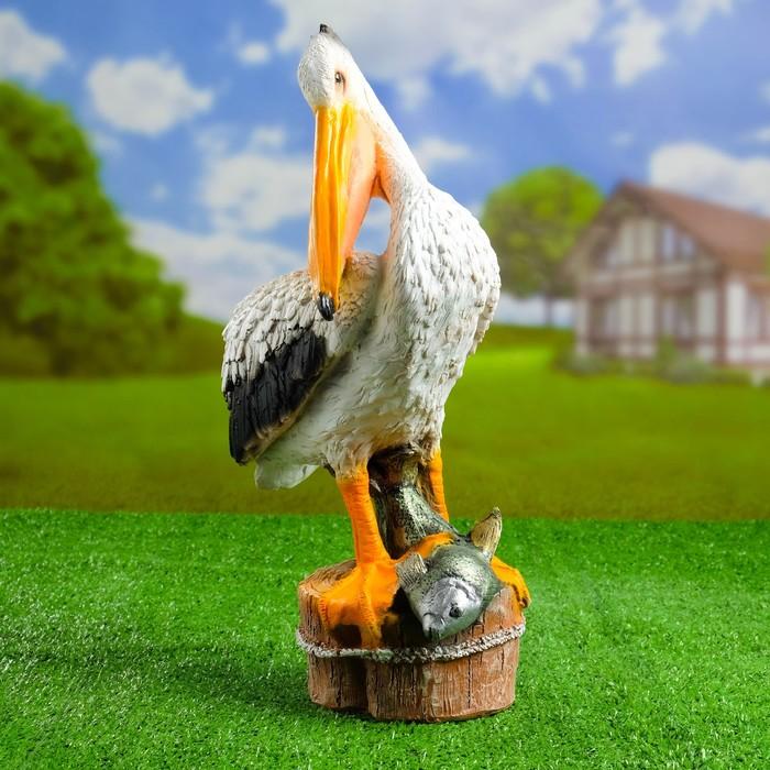 пеликан с деньгами в клюве фото заключается том, что