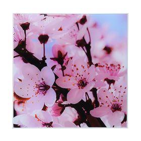 Картина на стекле 'Сакура' 30*30 Ош
