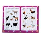 Развитие речи: сборник развивающих заданий для детей 2 лет и старше - Фото 2