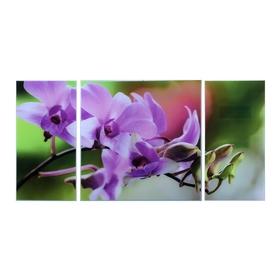 Картина модульная на стекле 'Цветы' 2-25*50, 1-50*50 см,  100*50см Ош