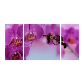 Картина модульная на стекле 'Орхидеи'  2-25*50, 1-50*50 см   100*50см Ош
