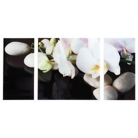 Картина модульная на стекле 'Орхидеи' 2-25*50, 1-50*50 см, 100*50см Ош