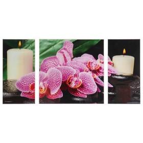 Картина модульная на стекле 'Орхидея со свечой' 2-25*50, 1-50*50 см, 100*50см Ош