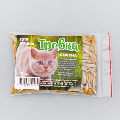 """Семена """"Травка для проращивания"""", пакет, 20 г"""