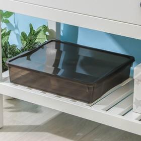 Ящик для хранения с крышкой «Колор. Стайл», 9 л, 40×34×8,5 см, цвет МИКС