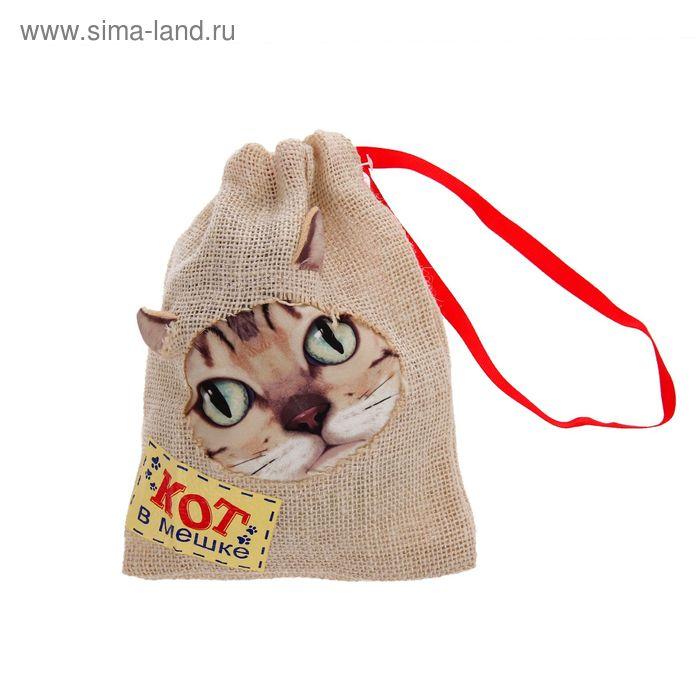 """Прикол кот в мешке """"Кот в мешке"""", + звуковой элемент"""