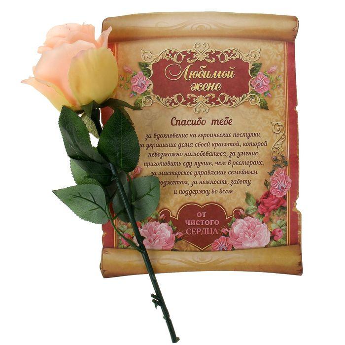 ней морем шуточные поздравления с подарками цветы интерьере фото
