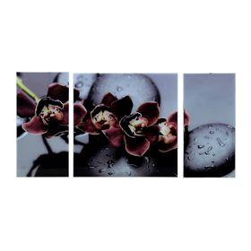 Картина модульная на стекле 'Черная Орхидея' 2-25*50, 1-50*50 см,  100*50 см Ош