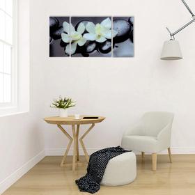 Модульная картина на стекле 'Пара орхидей'  2-25*50см, 1-50*50см 100*50см Ош