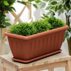 Ящик для растений с поддоном 40 см 'Фелиция', цвет терракотовый Ош