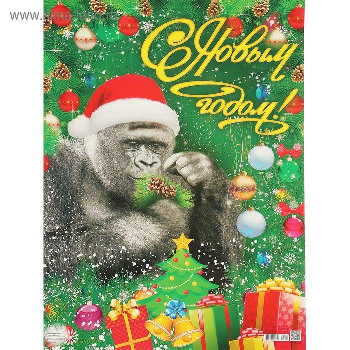 поразила легкость, поздравления деда мороза с новым годом обезьяны стойка