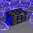 """Гирлянда """"Нить"""" 10 м , IP44, УМС, белая нить, 100 LED, свечение синее, 220 В - Фото 3"""