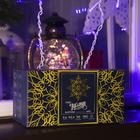 """Гирлянда """"Бахрома"""" 3 х 0.6 м , IP44, УМС, белая нить, 160 LED, свечение фиолетовое, 220 В - Фото 3"""