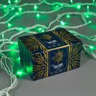 """Гирлянда """"Нить"""" 10 м , IP44, УМС, белая нить, 100 LED, свечение зелёное, 220 В - Фото 3"""