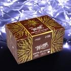 """Гирлянда """"Нить"""" 10 м , IP44, УМС, белая нить, 100 LED, свечение белое, 220 В - Фото 3"""