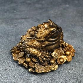 Сувенир 'Жаба на монетах' 8 см Ош
