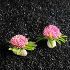 Растение искусственное аквариумное, 7,5 х 4,5 см, (набор 2 шт) микс цветов
