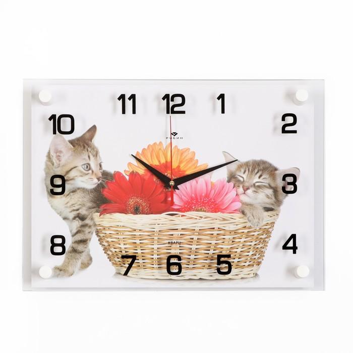 Часы настенные, серия Животный мир, Котята, 25х35 см, микс
