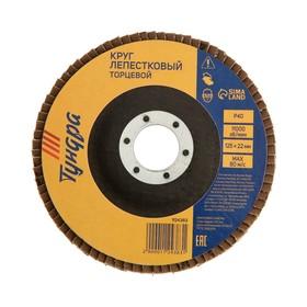 Круг лепестковый торцевой TUNDRA, 125 х 22 мм, Р40