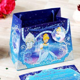 Пакет-сумка 'Самая очаровательная', Принцессы, +'Советы для принцессы' Ош
