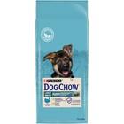 Сухой корм DOG CHOW PUPPY LARGE BREED для щенков крупных пород, индейка, 14 кг